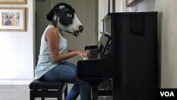 گائے کے ماسک میں ایک خاتون کپیوٹر پر کام کر رہی ہے