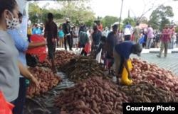 Gubernur Papua, Lukas Enembe membeli 5 ton ubi dan pangan lokal untuk dibagikan kepada masyarakat terdampak pandemi corona, 5 Mei 2020. (Foto: Humas Pemda)
