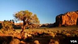 El Valle de los Monumentos es una atracción turística que forma parte de la Nación Navajo.