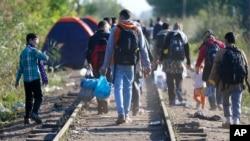 Migranti na granici izmedju Srbije i Madjarske, 9. septembar, 2015.