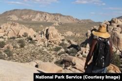 A hiker along the Hidden Valley trail, Joshua Tree National Park