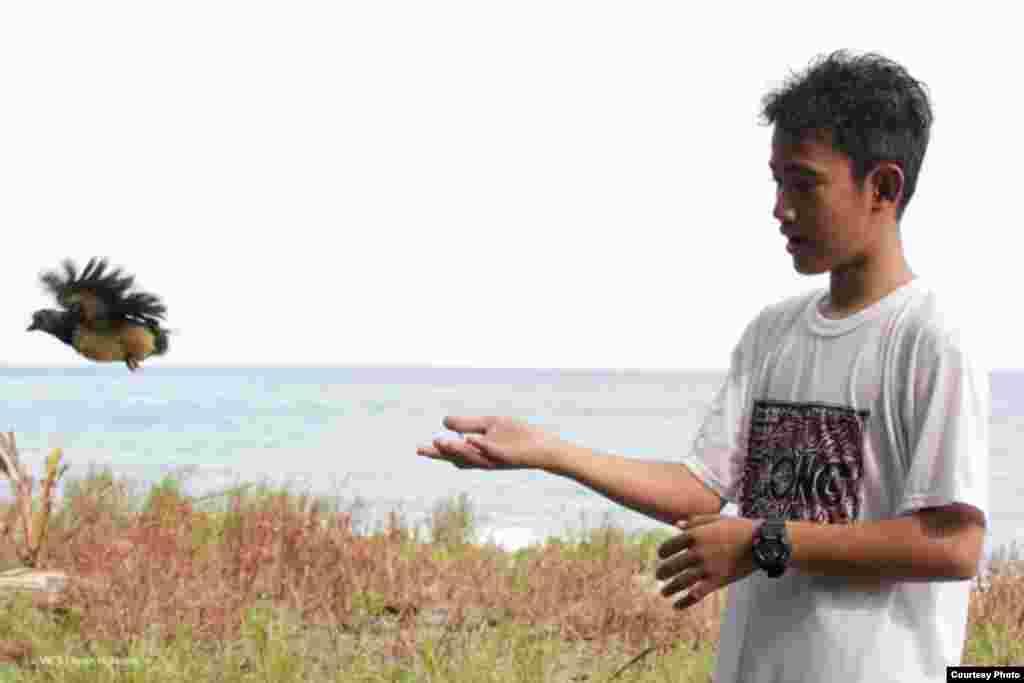 Seorang pelajar sukarelawan di Tanjung Binerean, Sulawesi Utara berpartisipasi dalam pelepasan anak burung maleo. (Iwan Hunowu/Wildlife Conservation Society)
