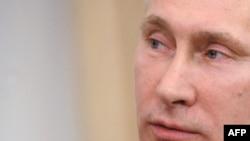 Сколько голосов за Путина? Последние опросы