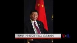美专家: 中国司法不独立 反腐难成功