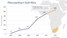 Rhino poaching in South Africa, 2007-2012