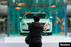 FILE - A man looks at a Cadillac CT6 displayed inside a fish tank during an event promoting the car's environmental-friendly features, in Shanghai, China, Feb. 25, 2016.