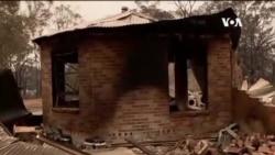 澳洲政府宣佈新南威爾士州山火緊急狀態