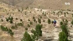 مسابقات بایسکلرانی کوهستانی