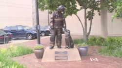 Popular Washington Monument Pays Tribute to Fire Dogs