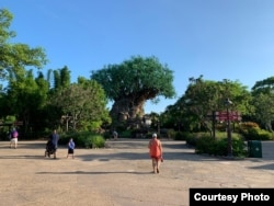 Suasana taman hiburan Disney's Animal Kingdom di tengah pandemi (dok: Alfian Rusli)