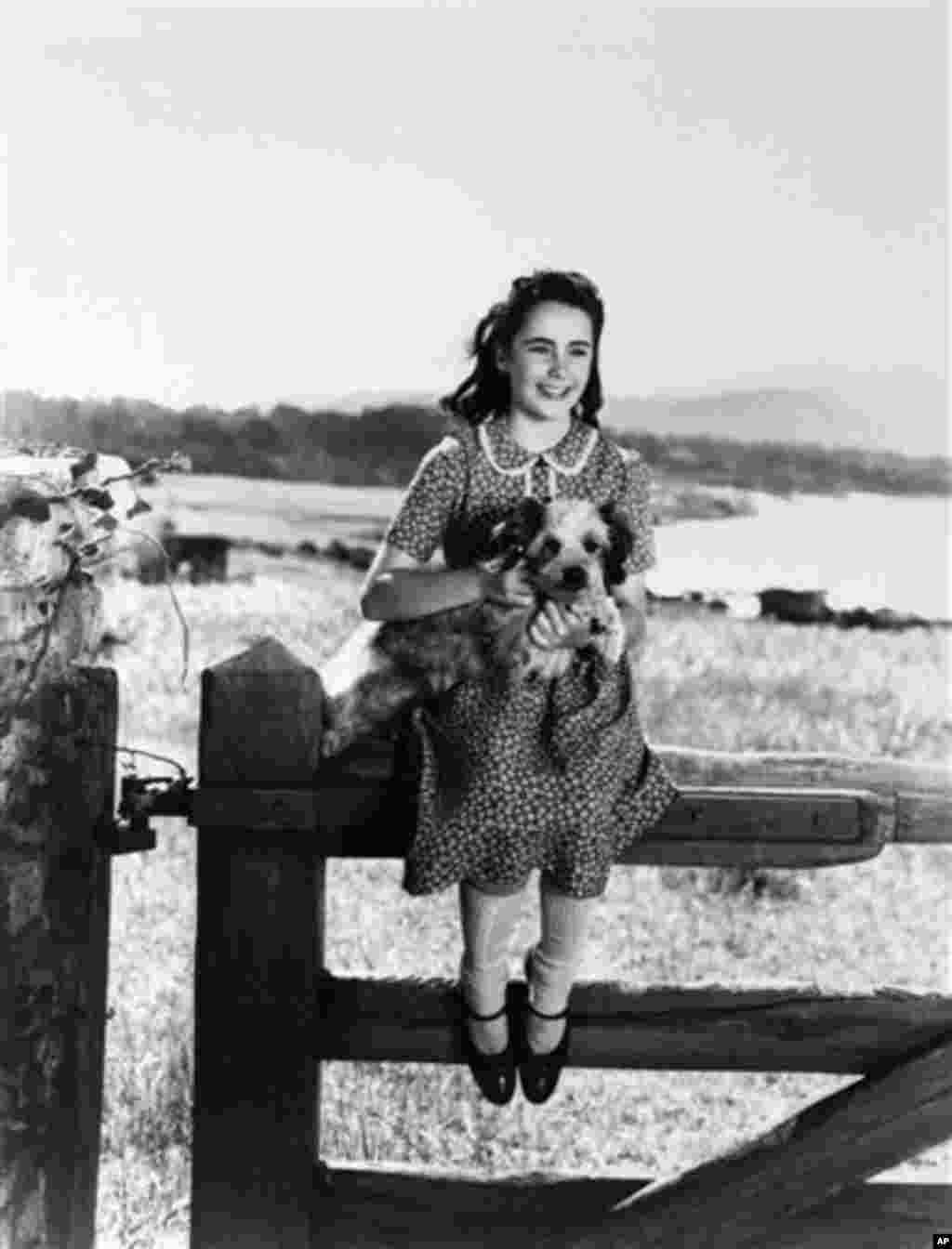 "Young actress Elizabeth Taylor is seen during the time that she was filming ""National Velvet"" (File 1944) - AP"