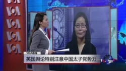 VOA连线: 英国舆论特别注意中国太子党势力