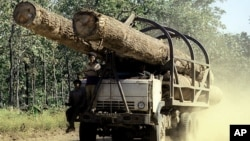 캄보디아 프롬펜 외곽 지역에서 한 트럭이 목재를 실어나르고 있다. (자료사진)