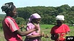 Số phận nông dân phái nữ