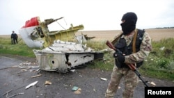 A pro-Russian separatist standing at the crash site of Malaysia Airlines flight MH17, near the settlement of Grabovo in the Donetsk region. (File)