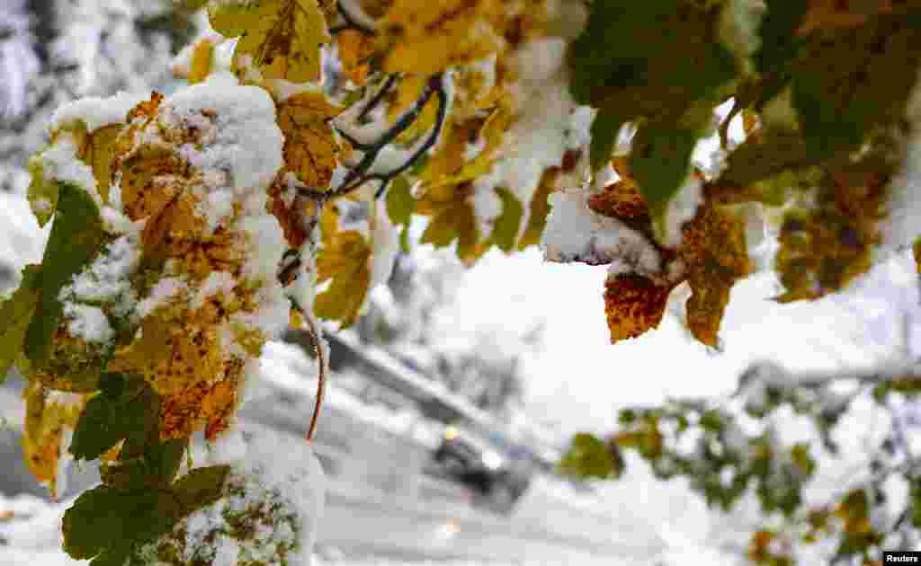 چین کے صوبہ ہیلانگجیانگ کے شہر ہاربن میں رواں ہفتے شدید برف باری کی وجہ سے اسکول اور سڑکیں بند کر دی گئی تھیں۔