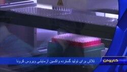 تلاش برای تولید گسترده واکسین آزمایشی ویروس کرونا