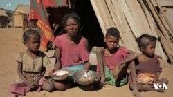 WFP : Ukosefu wa chakula kuongezeka maradufu Madagascar