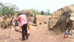 Abatwa Bahagurukiye Igiterwa c'ikawa I Muyinga mu Burundi