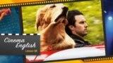 [영화로 배우는 영어] 빗속을 질주하는 법 - '한배 강아지 중 최고'를 영어로?