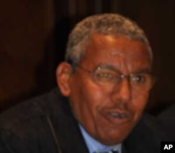 Parliamentary candidate Siye Abraha