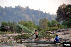 A fisherman casts his net near Don Sahong. The Laos government is planning a $600 million dam for the area but has been reluctant to reveal details surrounding the proposal and the impact it will have on fish migration and fish stocks. (Luke Hunt for VOA)