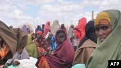 Azərbaycan yardımı Somali qaçqınlarına paylanıb