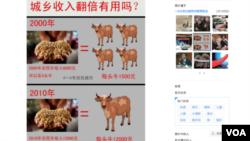 微博上一條關於胡錦濤在2020年之前把中國人的收入翻一番的承諾的評論(美國之音視頻截圖)