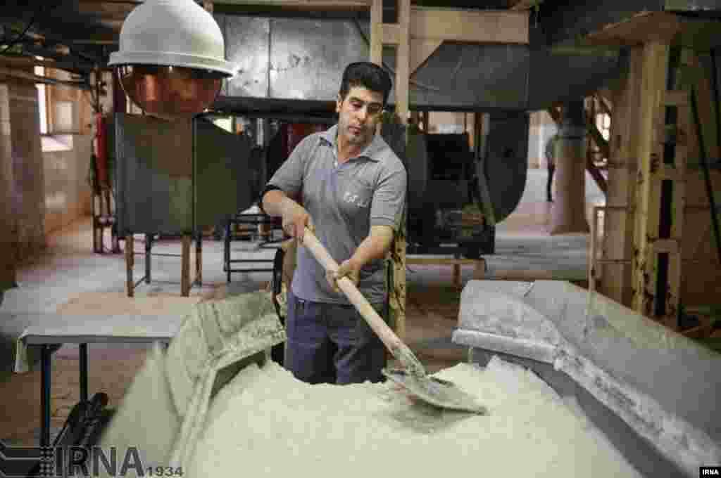 کارخانه تولید قند در کرج. این کارخانه که در آستانه تعطیلی بود، دوباره کار خود را آغاز کرد. عکس: اکبر توکلی