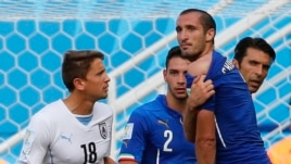Italy's Giorgio Chiellini accuses Uruguay's Luis Suarez of biting him during their match at the Dunas arena in Natal, June 24, 2014.
