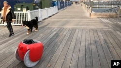 A pedestrian and her dog walk along a boardwalk near the Gita cargo-carrying robot on Monday, Nov. 11, 2019, in Boston. A subsidiary of Italian automaker Piaggio designed the machine to follow its owner lugging groceries and other items. (AP Photo / Matt O'Brien)