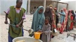 کمک ۸۲ میلیون دلاری چین به قحطی زدگان آفریقا