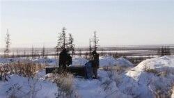 گزارش: احيای پارک حيوانات در سيبری با گرمايش زمين ممکن می شود