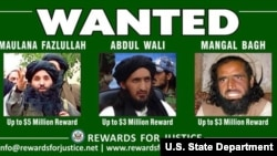 Rewards for Justice: Fazlullah, Wali, Bagh