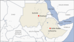 Looltoonni Sudaan Beeladeelee Nujalaa Saaman: Jiraattoota