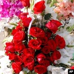 پھول اور زندگی کی تلخیوں کا امتزاج
