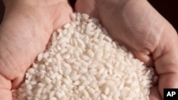 Cost of Rice Expected to Rise