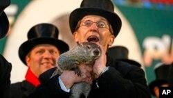 Ông Ron Ploucha ôm chú chuột Punxsutawney Phil trên tay khi chú ra khỏi hang hôm Chủ nhật 2 tháng 2, 2014