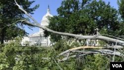 طوفان سے کیپیٹل ہل کے قریب درخت گر گئے