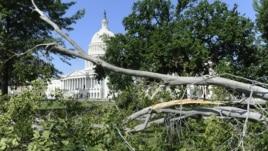 Giông bão làm đổ cây ở thảm cỏ phía đông của trụ sở Quốc hội Hoa Kỳ ở Washington, ngày 30 tháng 6, 2012