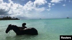A man is seen in silhouette bathing a horse in Dickenson Bay a month after Hurricane Irma struck the Caribbean island near St. Johns, Antigua and Barbuda, Oct. 6, 2017.