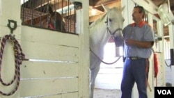 A prisoner and a retired racehorse at the James River Work Center in Virginia