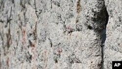 ဘာလင္တံတိုင္း ႏွစ္ငါးဆယ္ျပည့္ အထိမ္းအမွတ္ အခမ္းအနားက်င္းပ