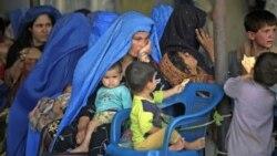 حفاظت دولت افغانستان از پناهگاه های زنان