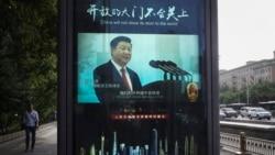 VOA连线(叶兵):习近平像遭女子泼墨 称反对独裁暴政