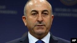 土耳其外长卡乌索戈鲁