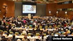 The 65th Annual UN DPI/NGO Conference. Photo Credit: UN DPI NGO.