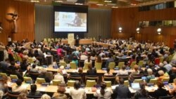 NGOs Look Beyond Millennium Development Goals
