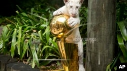 NBA Final 1