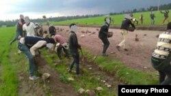 Mormii tibba kana godhame, Arsii, Oromiyaa